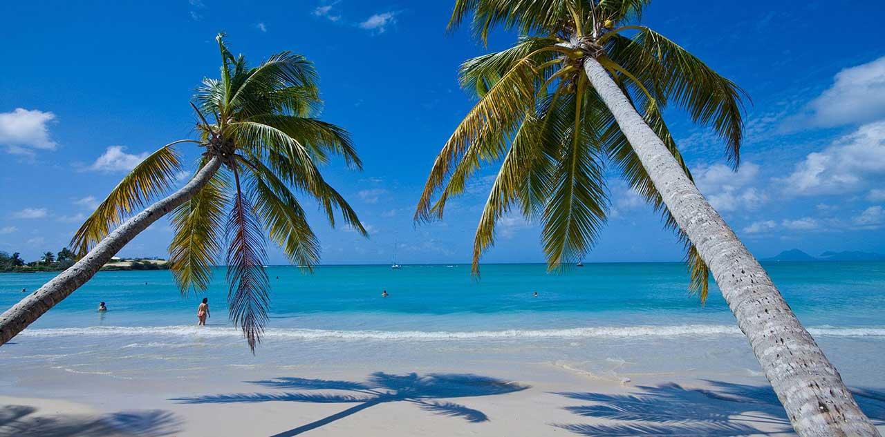 Punta Cana Dominika Tui